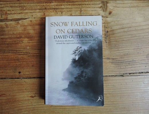 a plot overview of david gutersons snow falling on cedars